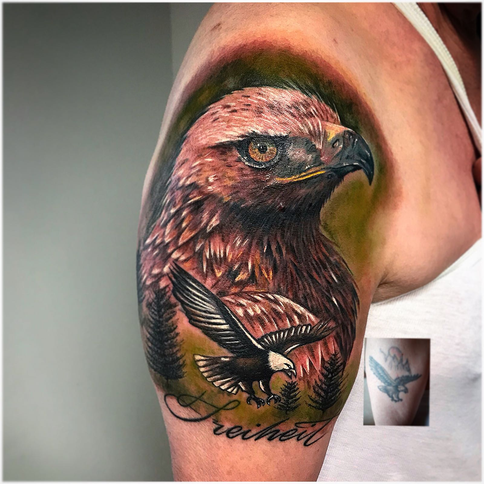 eagle color cover up